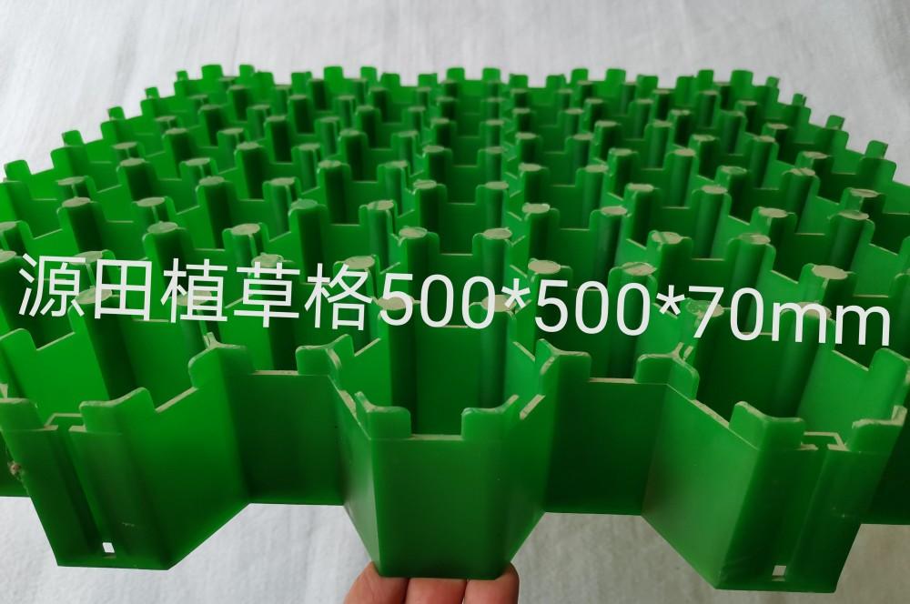 植草格 (2)