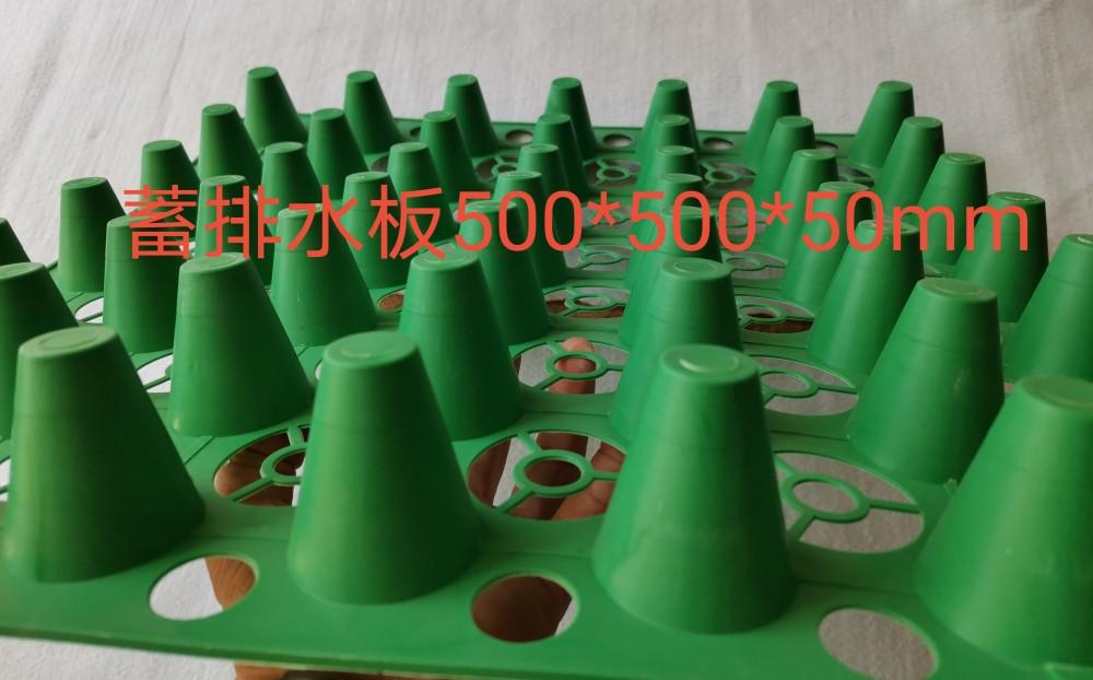 蓄排水板 (1)