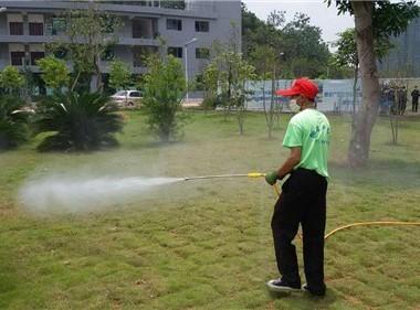 專業滅園林害蟲