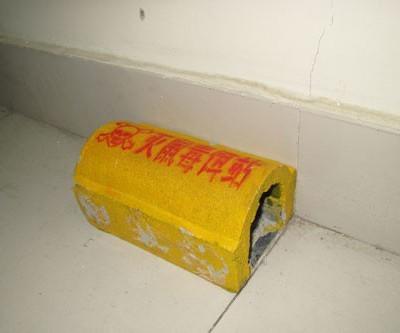 广西专业灭老鼠